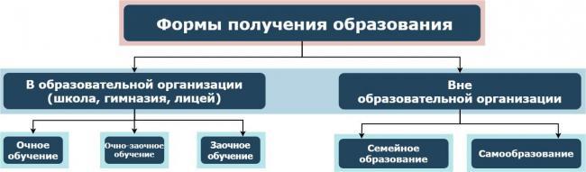 5b8186a63116ce6278a4b43b_untitled-diagram.jpg